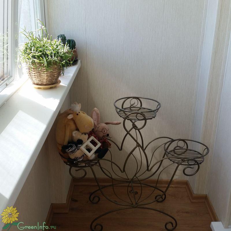Морской стиль в интерьере дизайн комнаты в 71