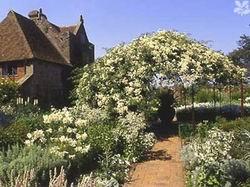 Белый сад