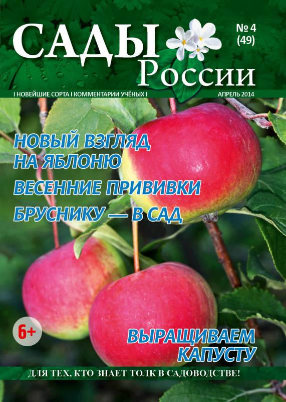 роз цветы россии челябинск каталог официальный сайт ознакомившись фактами