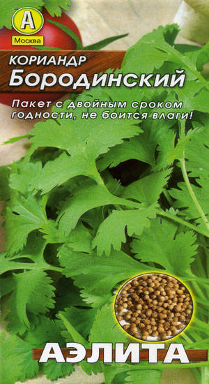 Кориандр бородинский выращивание из семян