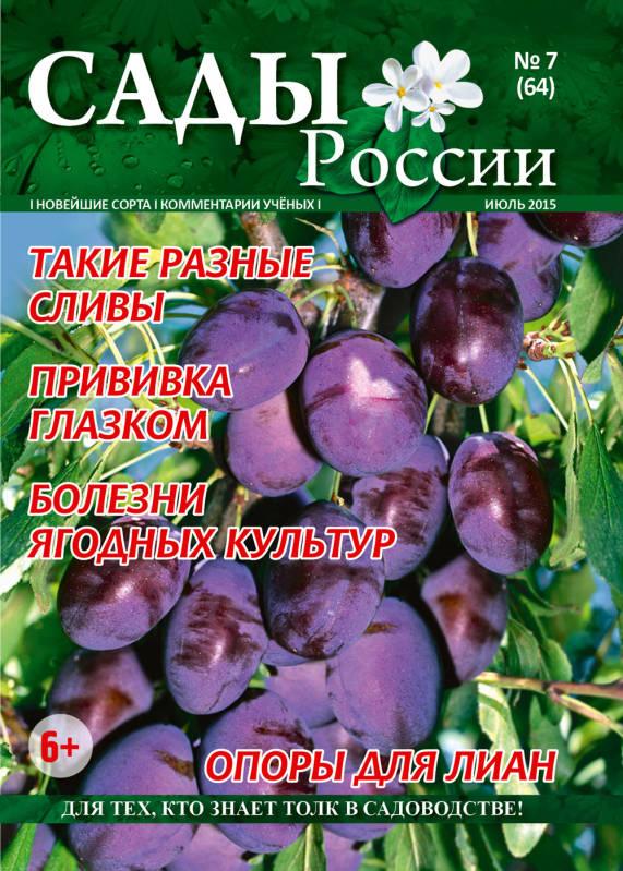 Цветы россии челябинск