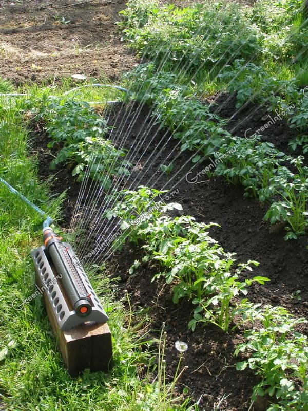 Система для капельного полива gardena