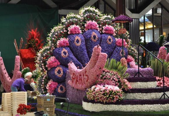 Фото выставок цветов голландии 94