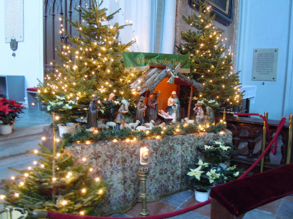 Пуансеттии в соборе Св. Стефана в Вене