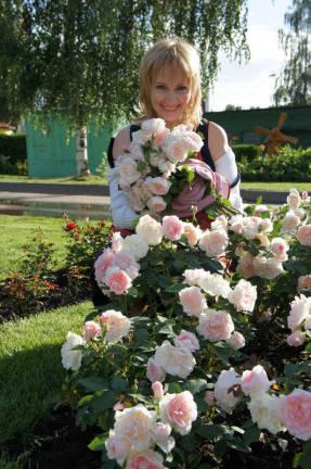 Роза Блаш — описание, особенности посадки и ухода, вид в саду