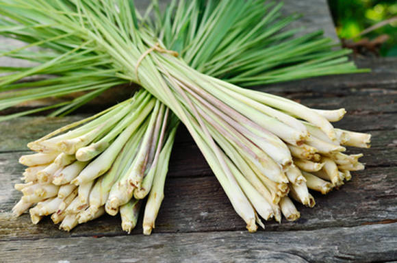 Как овощи используются нижние части розеток