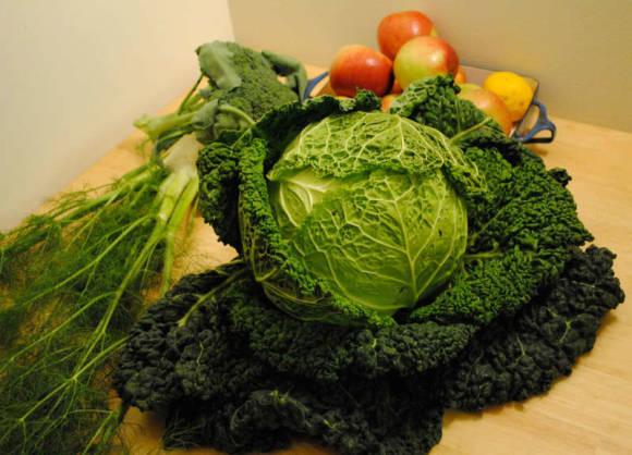 Савойская капуста кудрявый овощ на нашем огороде