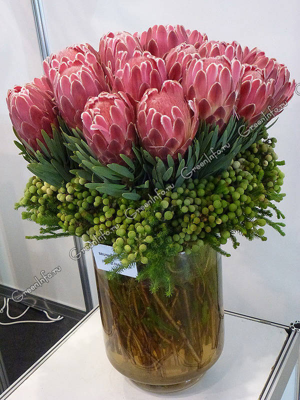 Цветы в срезке